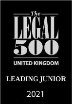 Leading Junior Legal 500 Logo
